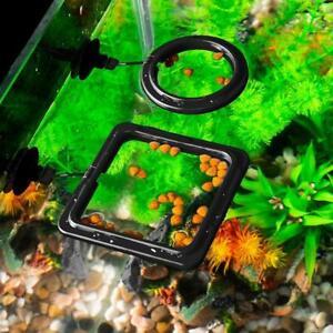 Feeding Ring Aquarium Fish Tank Station Floating Food New Square/Circle R2R4