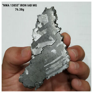 "IA5 - New ""NWA 13855"" Iron IAB-MG Meteorite 76.38g Etched and Polished Slice"