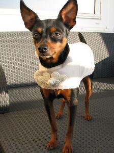 Hundejäckchen verziert hellbeige Hunde Mantel Hundemantel Hundejacke 19 cm