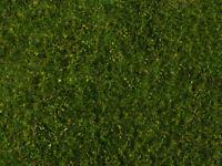 Noch 07291 alle Spuren, Wiesen Foliage, mittelgrün, Naturrealistische Landschaft