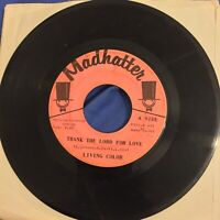 Living Color Thank The Lord For Love VG MADHATTER PINK LABEL rare northern 45