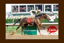 STREET SENSE - USA 2007 Kentucky Derby winner modern Digital Photo Postcard