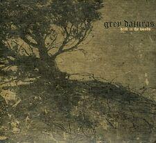 Grey Daturas - Dead in the Woods [New CD]