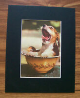 Print Puppy Dog In Bowl Yawning Peggy Burrows Corson 1955 Bookplate 8x10 Matted