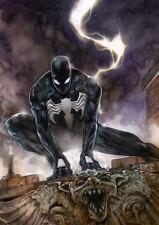 SPIDERMAN (black costume) SIGNED PRINT- Tom FLEMing