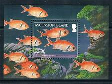 Ascension Is 2010 Reef Fish 1v MS SG 1068 MNH