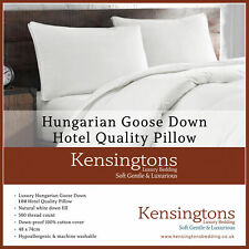 Kensingtons® Hungarian Goose Down Pillow 500TC Cotton Cover Hotel Quality