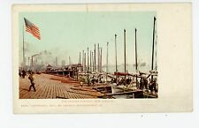 Logger Landing—Early New Orleans PMC Boat Dock—American Flag Antique 1901