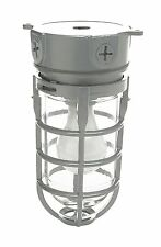 Explosion Proof style Ceiling mount Cage Light Fixture Retro Industry Commercial