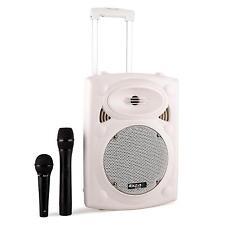 Cassa Altoparlante Trolley Portatile 2 Microfoni Wireless Karaoke Usb Bluetooth