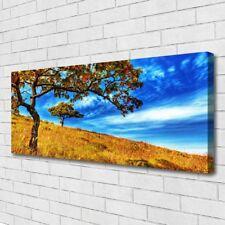 Leinwand-Bilder Wandbild Canvas Kunstdruck 125x50 Wiese Bäume Natur
