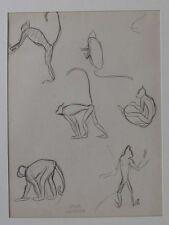 André Margat, dessin, étude de singe.