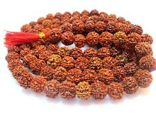 6 Mukhi Rudraksha Mala / Six Face Rudraksh Collector 16-18 MM - Nepal -109 beads