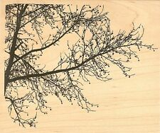 TREE BRANCH Wood Mounted Rubber Stamp IMPRESSION OBSESSION K16253 NEW