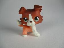 Littlest Pet Shop Collie Dog Puppy Lps #1542 Child Kid Birthday Toys