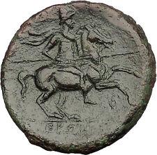 Syracuse in Sicily 240BC King Hieron II Horseman Large Ancient Greek Coin i54021