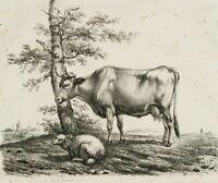 VERBOECKHOVEN; ROMMEL, Kuh mit Schaf auf der Weide, 19. Jh., Lithographie