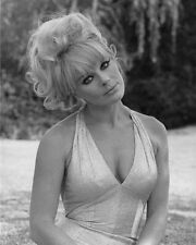 Elke Sommer 8x10 Classic Hollywood Photo. 8 x 10 B&W Picture #1