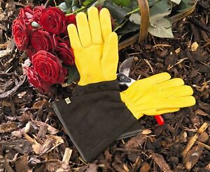 GENUINE GOLD LEAF TOUGH TOUCH GARDENING GLOVES LADIES FREE RECORDED DELIVERY