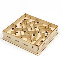 Labyrinth 3D Wooden Puzzle DIY Art Model Hobby Build Kit JIGZLE Game Station