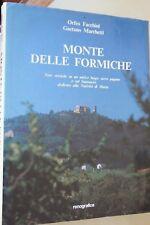 Monte delle Formiche - Orfeo Facchini - Gaetano Marchetti 1990