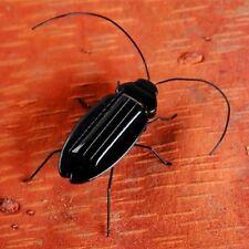 6 Legs Teaching Fun Gadget Kids Gift Solar Power Energy Cockroach Insect Bug