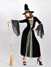 Ladies Quality Halloween Witch Wizard Costume Dress & Hat Size 10 Spiders Web