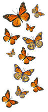 Monarch Butterfly Temporary Tattoos - 5 Sheets - 55 Butterflies