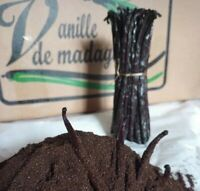 50 g Vanille Pulver aus Madagaskar 100% gemahlene Vanilla