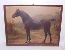 Richard Schoenbeck Cavallo Rassepferd Stampa Vintage Stampa Telaio