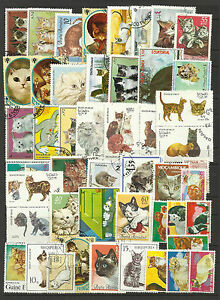 DOMESTIC CATS Collection Packet of 50 Different WORLD Stamps