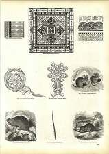 Old Engravings Anglo-saxon Ornaments Worsted Embriodery Beaver Coypu Hatter
