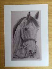 HORSE PICTURE A5 Print of Original Drawing Animal Art Gift Wall Decor