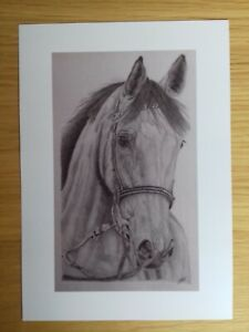RACE HORSE PICTURE Equine gift Original Drawing Animal Art A5 print Wall Decor
