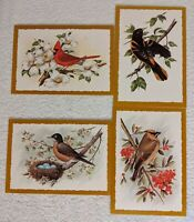 Vintage Set of 4  Domestic Bird Greeting Cards With Descriptions & Envelopes