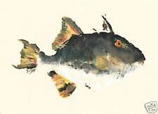 "Gyotaku Fish Rubbing - ""Trigger Happy"" - Trigger Fish"