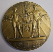 1928 OFFICIAL SUMMER OLYMPIC PARTICIPATION MEDAL AMSTERDAM, JC WIENECKE, V. FINE