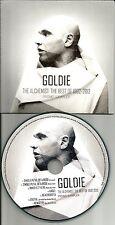 GOLDIE w/ ARMAND VAN HELDEN Sampler w/ EDITS & REMIXES EUROPE PROMO CD single