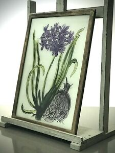 VINTAGE INDIAN REVERSE GLASS PAINTING. HYACINTH & BULB. AUTHENTIC ART DECO FRAME
