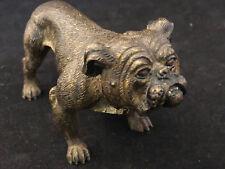 Bulldog Important Bronze de Vienne Antique Austrian Vienna Vers 1900