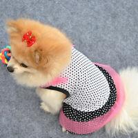 AM_ Cute Puppy Dog Pet Princess Beautiful Dot Yarn Elastic Skirt Dress Clothes S