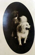 Antique Azo Postcard Photo Child w Samoyed American Eskimo Spitz dog Art photo*