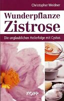 WUNDERPFLANZE ZISTROSE - Heilerfolge mit Cystus - Christopher Weidner BUCH