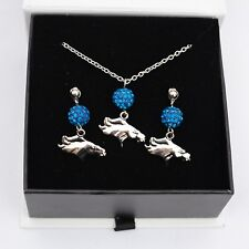Denver Broncos Jewelry Crystal Necklace and Earrings Set
