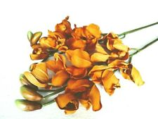 """35"""" Autumn Yellow Silk Gladiola Flowers Stems Pack of 2, New"""