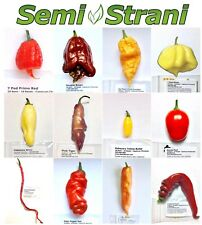 120 Semillas CHILES PIMIENTO Coll FANTASY: PRIMO, PINK TIGER, THUNDER MOUNTAIN