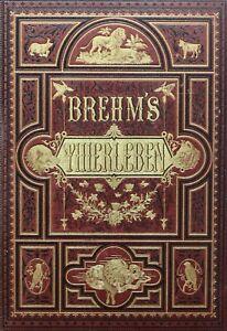 BREHMS THIERLEBEN,ALLGEMEINE KUNDE DES THIERREICHS,10 PRACHTBÄNDE,1886,RAR