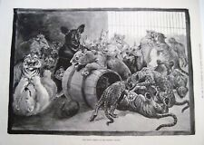 "1891 Newspaper Illustration by ""Louis Wain"" w/ Animals Playing"