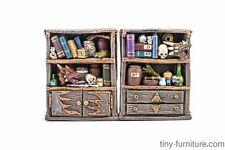 Beast hunter bookshelves - D&D, Mordheim, dungeon terrain, dwarven forge