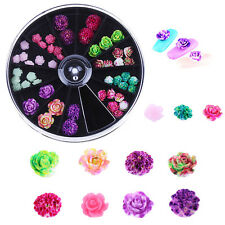Women Beauty 12 Colors Resin Rose Flower DIY 3D Nail Art Tips Decoration Wheel